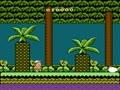 Adventure Island II (USA) - Screen 4